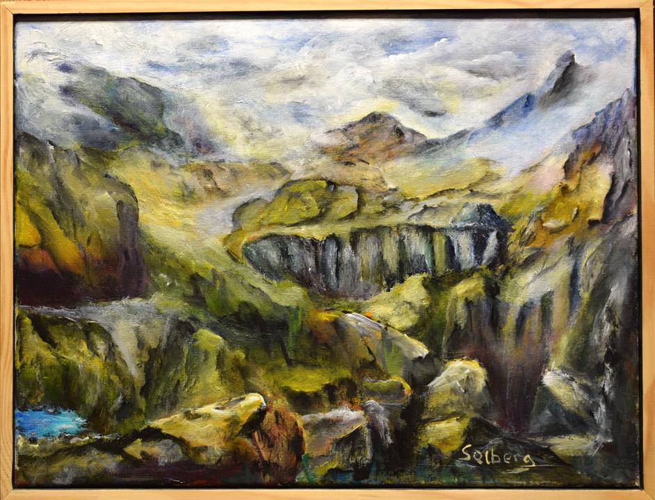 14015 Bjerge med lille sø