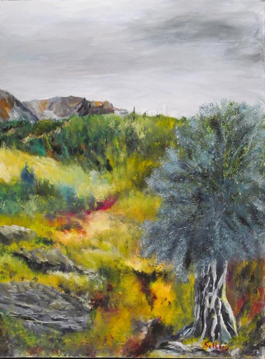 15001 Oliventræ SOLGT